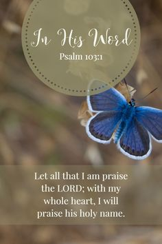 Let all that I am praise the LORD; with my whole heart, I will praise his holy name. Psalm 103:1