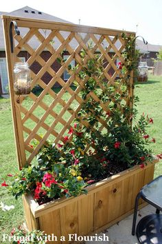 Planters with Mandevilla plants for a little privacy....love this to replace my ugly shrubs!