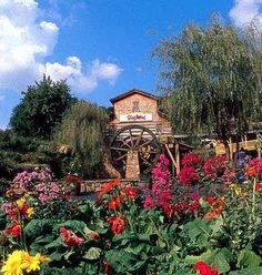 Dollywood; Pigeon Forge, TN   Have been to many amusement parks, this is among the prettiest! Fun for young and old!