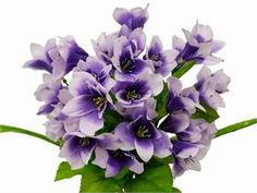 150 Oriental Lily - Purple/Lavender | eFavorMart