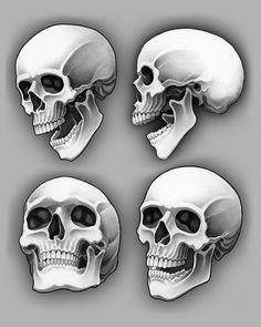 angles and shadows! Skull Artwork, Skull, Anatomy Art, Skeleton Drawings, Skull Stencil, Art Sketches, Skeleton Art, Airbrush Art, Skulls Drawing