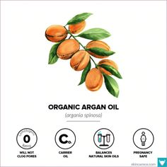 Argon oil: Comedogenic Rating: 0 Smell: Odorless to a very light nutty aroma Color: Golden yellow Co Castor Oil For Skin, Natural Oils For Skin, Coconut Oil For Skin, Natural Skin Care, Oily Skin, Sensitive Skin, Hair Removal, Comedogenic Ratings, Argon Oil
