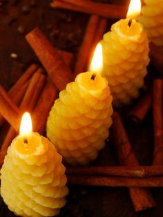Items similar to Pine Cone Beeswax Candles- Pine Cone Candles- Aromatherapy Candle- Rustic Candle- Mountain Cabin Candle on Etsy Aromatherapy Candles, Beeswax Candles, Lakeside Cottage, Rustic Candles, Flamingo Birthday, Southwestern Decorating, Mountain High, Log Cabin Homes, Business Products