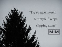 Nine Inch Nails - Into the Void #song #lyrics