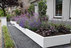 Voortuin 'anders dan anders': door Mocking Hoveniers #modernetuin #strak #modern #tuinieren #homify #lavendel #planten #voortuin