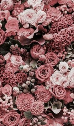 Beautiful Roses Wallpaper Backgrounds For iPhone: Flower Background Wallpaper, Flower Phone Wallpaper, Trendy Wallpaper, Pretty Wallpapers, Aesthetic Iphone Wallpaper, Flower Wallpaper, Aesthetic Wallpapers, Wallpaper Backgrounds, Iphone Backgrounds