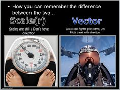 If I were a fighter pilot I would call myself Vector as vectors have direction.  Scales don't move.  It's one example to help the students remember the difference between scalers and vectors.