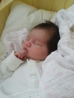 Contemplating life at such an early age, weeks old