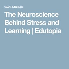 The Neuroscience Behind Stress and Learning | Edutopia