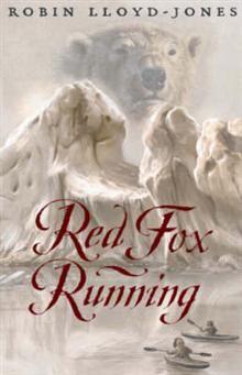 Red Fox Running by Robin Lloyd-Jones. Fox Running, Lloyd Jones, 16 Year Old, Red Fox, Homeland, Arctic, Robin, Travelling, Survival