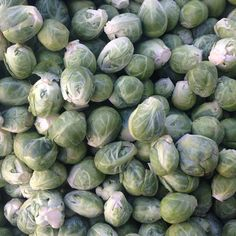 Are #brusselssprouts on your Thanksgiving menu next week? Stop by #Manhattan's Union Square Greenmarket to pick some up! Open Mon, Wed, Fri & Sat 8AM-6PM #farmersmarketnyc