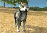 why are wolfquest pups so cute ;-;