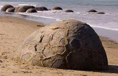 """Képtalálat a következőre: """"új zéland kövek"""""""