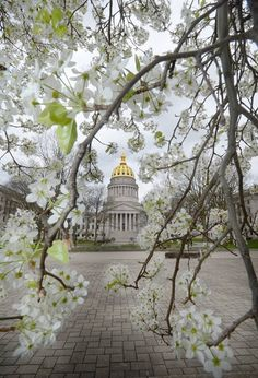 State Capital - Charleston, West Virginia