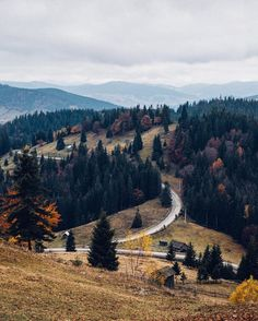 An Autumn Journey through the Carpathian Mountains. Carpathian Forest, Carpathian Mountains, Beautiful World, Beautiful Places, Landscape Photography, Nature Photography, Voyage Europe, Photo Journal, Adventure Is Out There