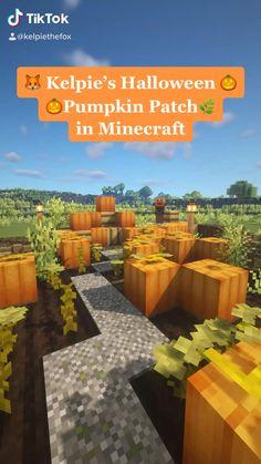 Minecraft Pumpkin, Minecraft Seed, Minecraft Images, Minecraft Cottage, Cute Minecraft Houses, Minecraft Plans, Amazing Minecraft, Minecraft Blueprints, Minecraft Crafts