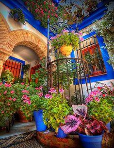 Colorful Spanish courtyard | Garden me, pretty yard me.