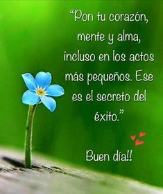 Frases Bonitas Para Facebook: Reflexion Para Iniciar El Dia Good Morning Funny, Good Morning Good Night, Morning Wish, Smart Quotes, Love Me Quotes, Quotes En Espanol, Happy Everything, Daily Inspiration Quotes, Spanish Quotes