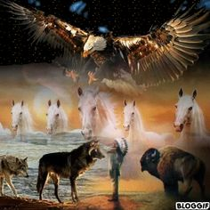 Discover & share this Animated GIF with everyone you know. GIPHY is how you search, share, discover, and create GIFs. Native American Beliefs, Native American Images, Native American History, Native American Indians, Pow Wow, Native Art, First Nations, Beautiful Paintings, Spirit Animal