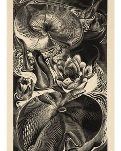 Gertrude Hermes, 1930 |Waterlilies #gertrudehermes#woodcut#reliefprint Water Lilies, Hermes, Abstract, Artwork, Instagram, Summary, Work Of Art, Auguste Rodin Artwork, Artworks