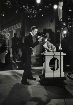 Elvis singing 'Hound Dog' to a bewildered Basset Hound on the Steve Allen Show, New York, 1956. Photo by Jock Carroll.