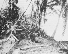Japanese Bunker, Pacific WW2 in New Guinea