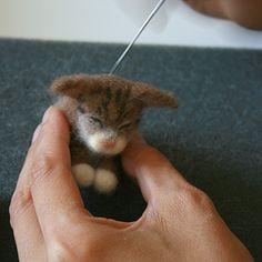 mini tutorial napping kitten