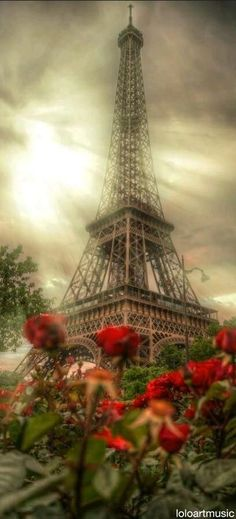 Eiffel Tower - The beauty of Paris, France.