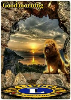 Lion Icon, Lions Clubs International, Lion Poster, San Fernando, Club Shirts, Good Morning, Shirt Designs, Icons, Posters