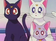 Imagem de cat, sailor moon, and luna
