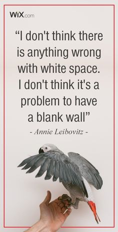 Inspirational Design Quotes: I don't think there is anything wrong with white space. I don't think it's a problem to have a blank wall. - Annie Leibovitz.