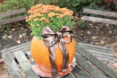 """""""Mumkin"""" So cute, Clean out pumpkin, spray a little bleach inside to keep the mold away, and set a potted plany inside. Voila! You have a adorable fall porch decoration or a centerpiece!"""