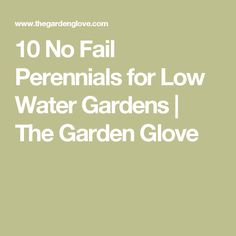10 No Fail Perennials for Low Water Gardens | The Garden Glove