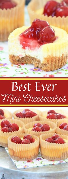 Best Ever Mini CheesecakesYou can find Cheesecake bites and more on our website.Best Ever Mini Cheesecakes Mini Cheesecakes, Mini Cheesecake Cupcakes, Mini Cheesecake Recipes, Fluffy Cheesecake, Oreo Cupcakes, Beste Cupcakes, Cherry Pie Cupcakes, Cherry Cheesecake Bites, Birthday Cheesecake
