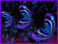 """Midnight Butterflies""  by Wizzle"