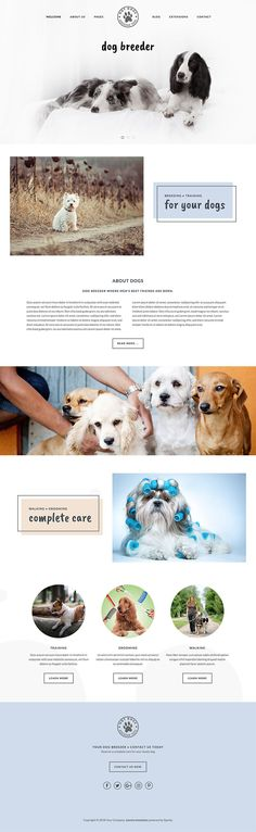 template is dedicated for dog breeders and all websites which primary business is related to dogs. You can use to to create for dog trainers, dog groomers, pet shops and similar websites. Dog Template, Dog Breeders, Joomla Templates, Create Website, Pet Shop, Trainers, Shops, Animation, Pets