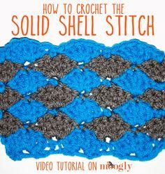 Solid Shell Stitch Tutorial