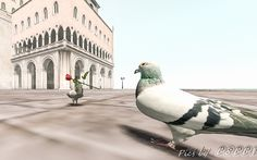 Taken at Fantasy Faire 2017 - Sim :- The Rose Pigeon, How Beautiful, Sims, Fantasy, Rose, Animals, Pink, Animaux, Mantle
