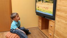 Pediatricians issue new media guidelines for kids.  In addition to limiting all entertainment screen time — including TV, the Internet and various smart devices — to less than two hours daily, the guidelines recommend children under age 2 get no screen time.