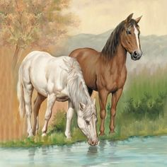 A paper napkin for decoupage of a brown and white horse drinking from a rivers stream.   Great for your decoupage projects.