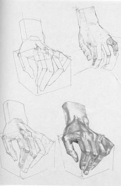A wonderful book: Die Gestalt des Menschen by Gottfried Bammes Drawing Practice, Drawing Lessons, Drawing Techniques, Anatomy Sketches, Drawing Sketches, Art Drawings, Human Anatomy Drawing, Anatomy Art, Hand Drawing Reference