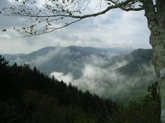 Taking a Gatlinburg vacation? Looking for family friendly Gatlinburg hotels? Discover the best kid friendly Gatlinburg hotels. Gatlinburg Hotels, Gatlinburg Vacation, Tennessee Vacation, Gatlinburg Tennessee, East Tennessee, Blue Ridge Mountains, Great Smoky Mountains, Park Pictures, Smoky Mountain National Park