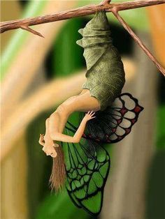 Fantasy | Whimsical | Strange | Mythical | Creative | Creatures | Dolls | Sculptures | fairy                                                                                                                                                     Mais