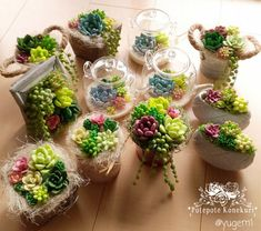 Types Of Succulents, Planting Succulents, Planting Flowers, Cold Porcelain Flowers, Hens And Chicks, Polymer Clay Flowers, Succulent Arrangements, Miniature Crafts, Little Plants