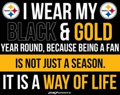 Steeler Fan for Life