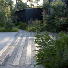 Beautiful lush layered planting with a driveway of sleepers and crushed rock. The perfect modern Australian garden!
