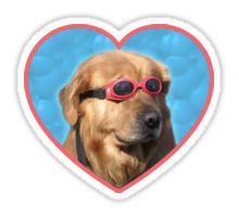 """Doggo Stickers: Swimmer Dog"" Stickers by Elisecv Loyal Dogs, Guide Dog, Aesthetic Stickers, Training Your Dog, Cute Stickers, Laptop Stickers, Dog Friends, Dog Life, Dog Toys"