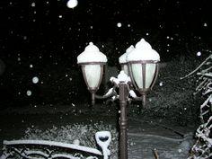 Lamp and snow at night
