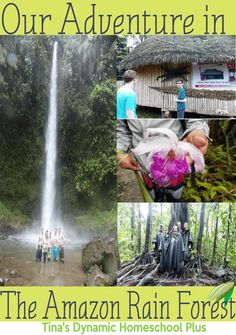 Our Adventure in The Amazon Rain Forest @ Tina's Dynamic Homeschool Plus