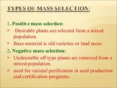 Breeding self pollinated crops
